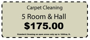 cheap and false road signs carpet cleaners